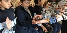 2020_02_27_3º visita Insectpark (4)_CEIP FDLR_Las Rozas 33
