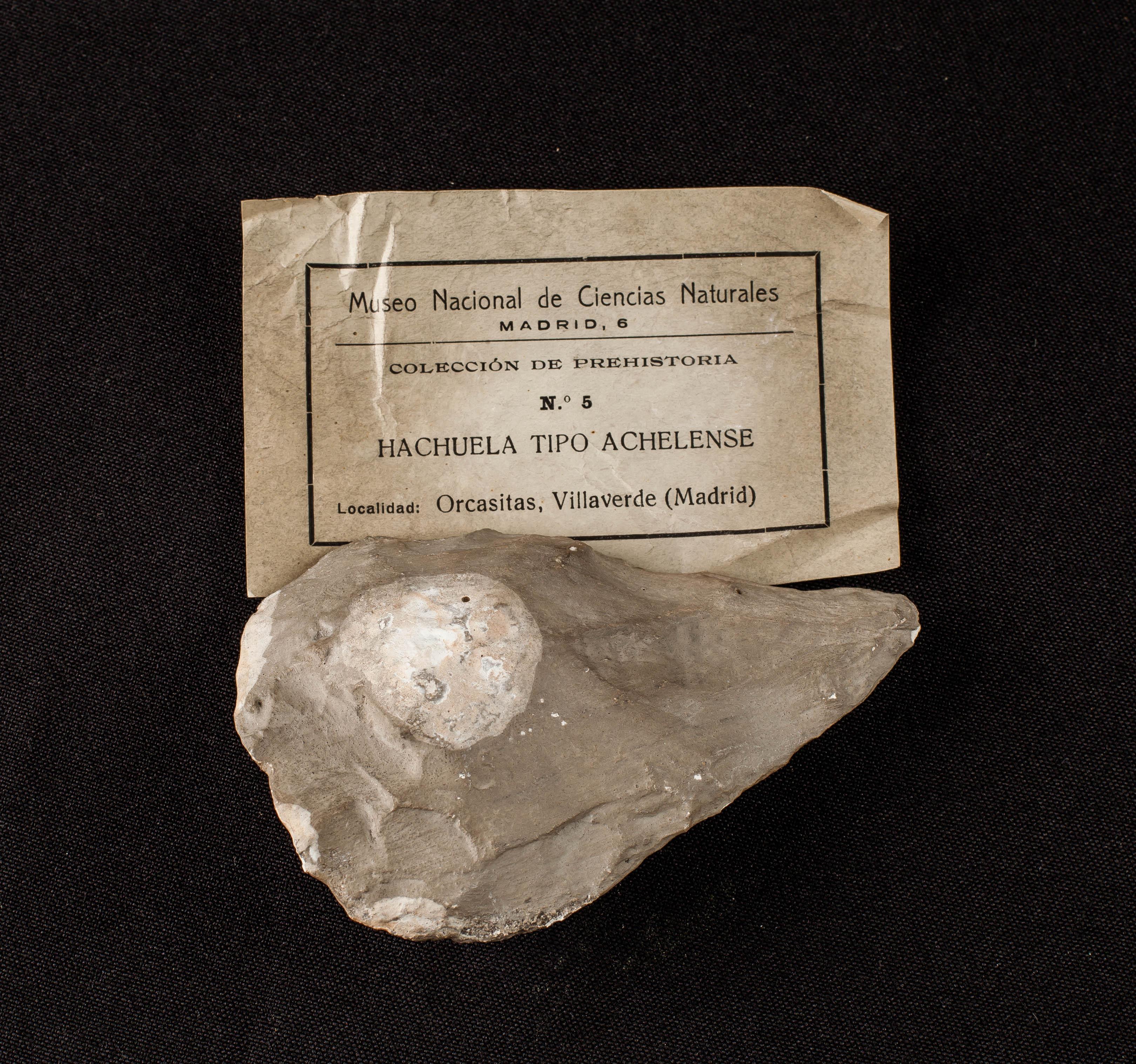 IES_SANISIDRO_MUSEO_Prehistoria_004