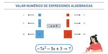 Valor numérico de un polinomio con baldosas algebraicas