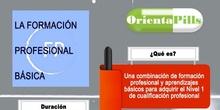 Infografía FP BÁSICA ORIENTAPILLS