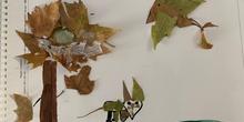 Arts- Creaciones con hojas de otoño