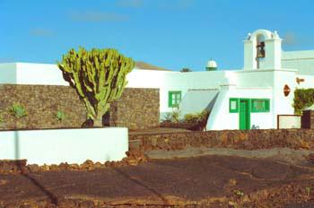 Jardines Fundación César Manrique