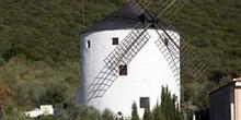 Molino de viento, Puerto Lápice, Ciudad Real, Castilla-La Mancha