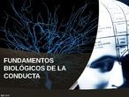 PSICOLOGIA BACHILLERATO TEMA 2