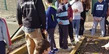 5º PLANTA EN EL HUERTO_CEIP FDLR_LAS ROZAS 13