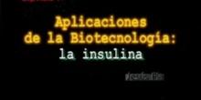 Capítulo 4º: Aplicaciones de la biotecnología: La insulina