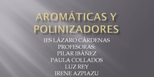 Aromáticas y Polinizadores IES Lázaro Cárdenas: Profesoras
