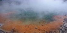 Aguas térmicas de Rotorua, Nueva zelanda