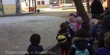 INFANTIL - 3 y 4 AÑOS C - BOSQUE - ACTIVIDADES