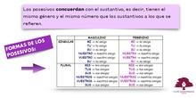 PRIMARIA 3º - LENGUA CASTELLANA Y LITERATURA - LOS POSESIVOS