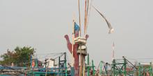 Reparando la barca, Jakarta