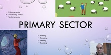 Social 5º - Primary Sector