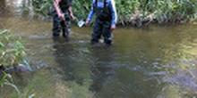 Inspeccion rio guadarrama 5