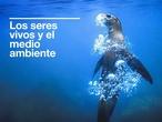 SECUNDARIA 4º - BIOLOGÍA Y GEOLOGÍA - LOS SERES VIVOS Y EL MEDIO AMBIENTE