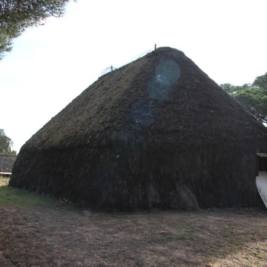Blog Doñana (Imagen 1)