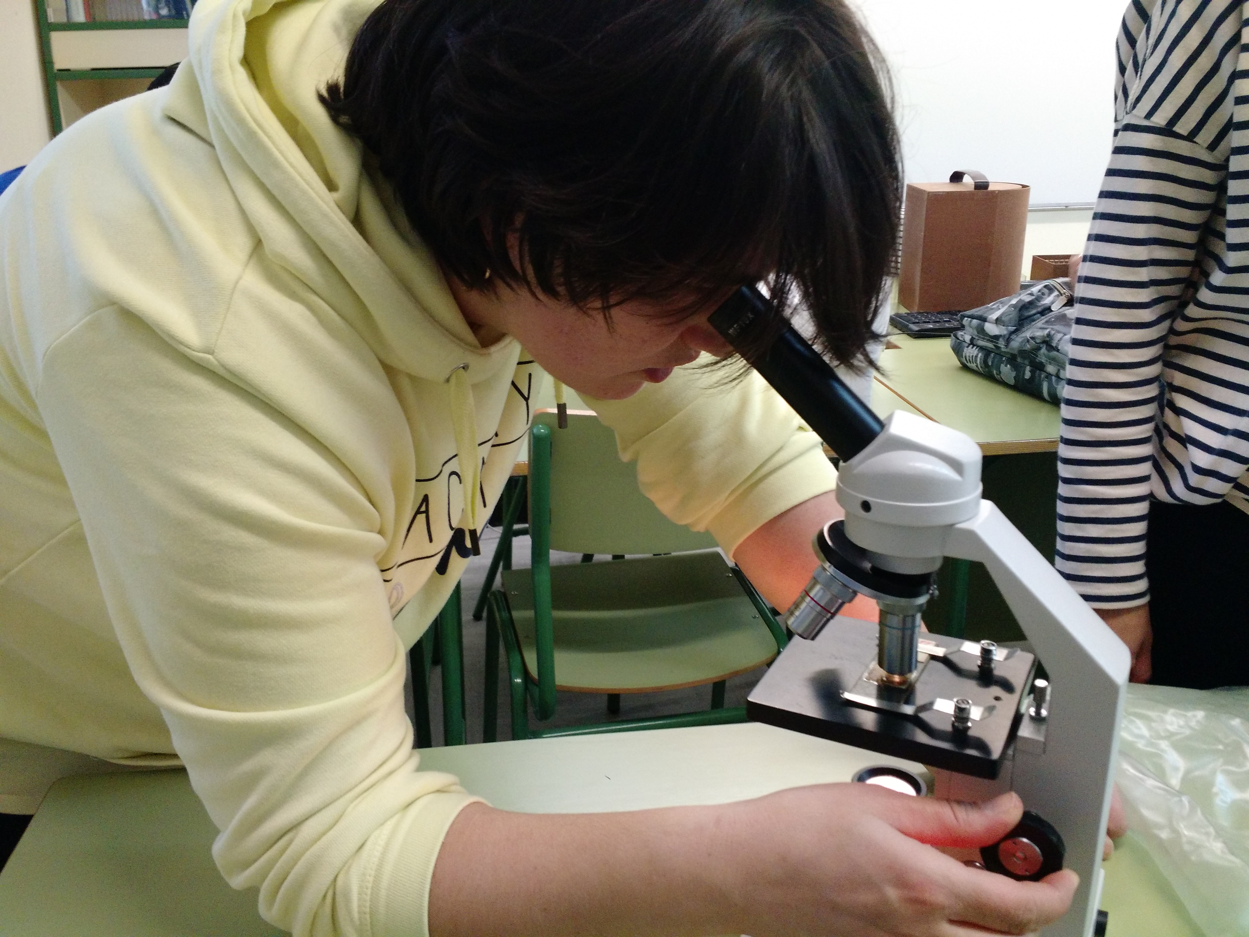 Usando el microscopio 6