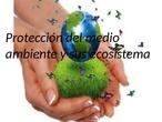 LA PROTECCION DEL MEDIO AMBIENTE Y SUS ECOSISTEMAS