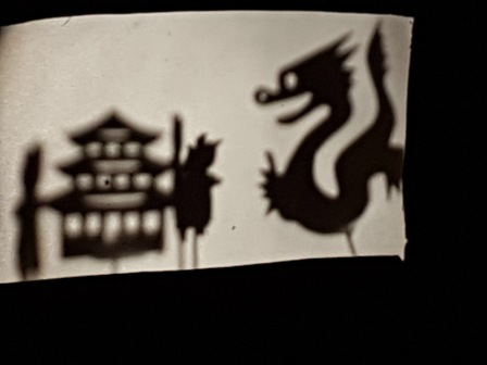 Los pulpos y las sombras chinas 3