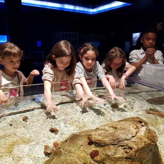 Fotos Aquarium Xanadú 3ºB 18
