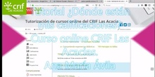 Tutorial calificaciones curso on line