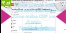Tutorial calificaciones curso on line