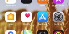 Cómo enviar fotos de las tareas por e-mail – iOS (iPhone)