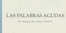 PRIMARIA - 5º - LENGUA - PALABRAS AGUDAS