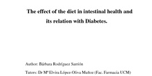 The effect of the diet in intestinal health and its relation with Diabetes