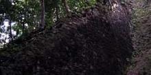 Vegetación invadiendo la escalinata de una pirámide, Tikal, Guat