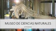 Museo Ciencias Naturales - 2º primaria