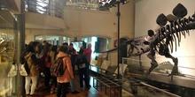 Fotos visita Museo CCNN y Botánico