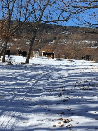 2017_12_04_EXCURSION CUARTO NIEVE 2 8