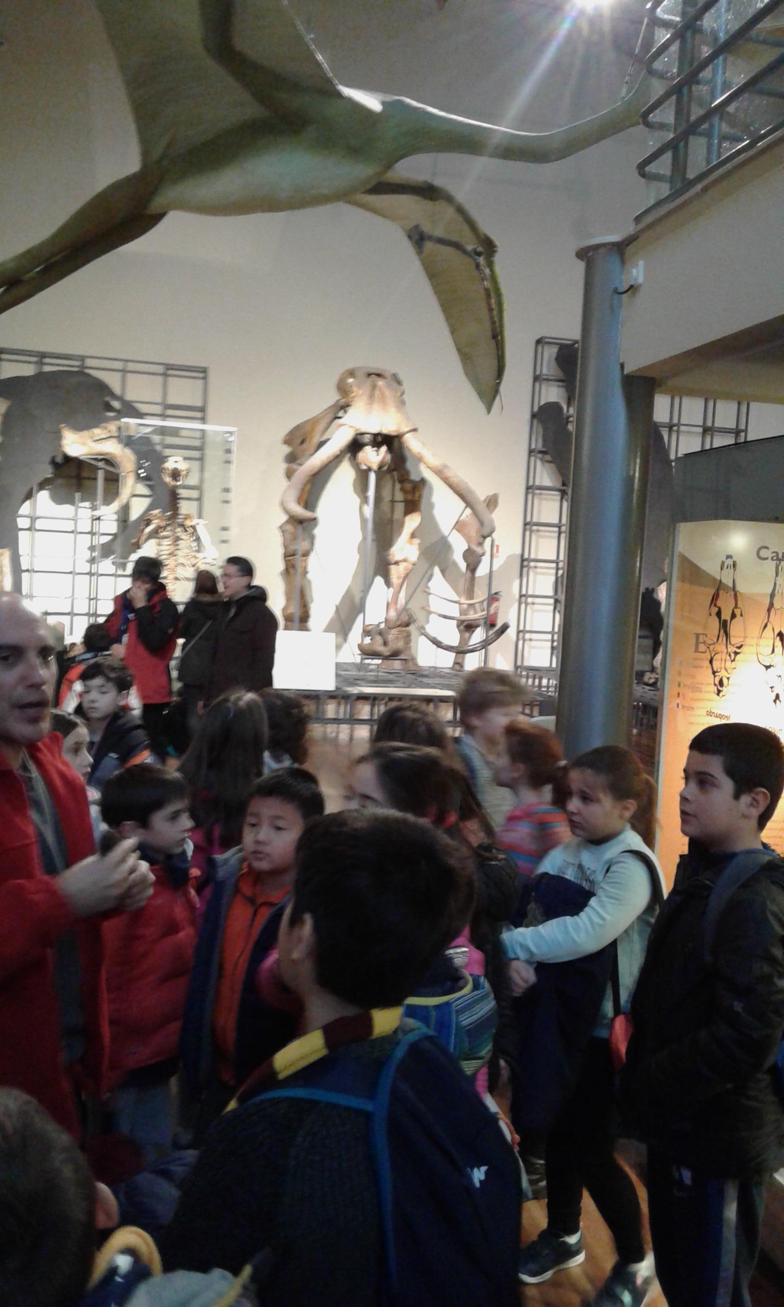 VISITA AL MUSE DE CIENCIAS 3ºA 6