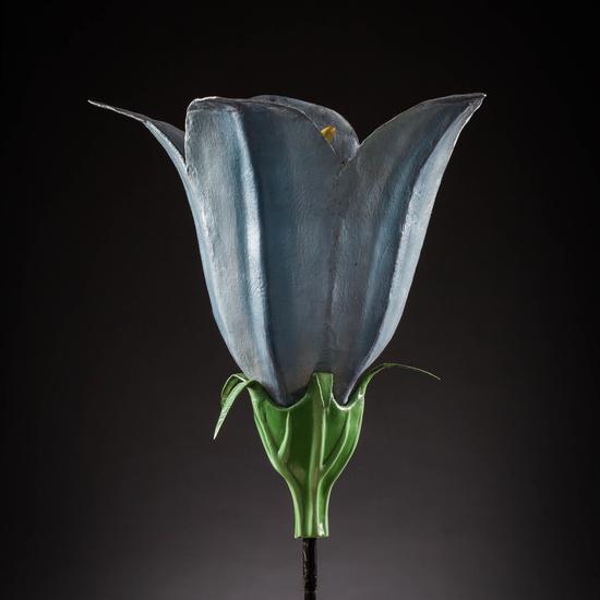 IES_SANISIDRO_MUSEO_Botanica_004