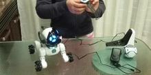 Robot Chip - Carla 5º