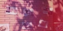 SECUNDARIA - TODOS - EXPOSICIÓN - FOTOGRAFÍA - OSCAR - ACTIVIDADES