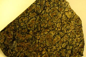 Serpentinita fajeada (Málaga. Sierra Bermeja)