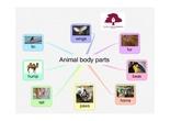 PRIMARIA 1º - CIENCIAS DE LA NATURALEZA - ANIMAL BODY PARTS