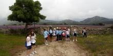 Camino de Santiago 24