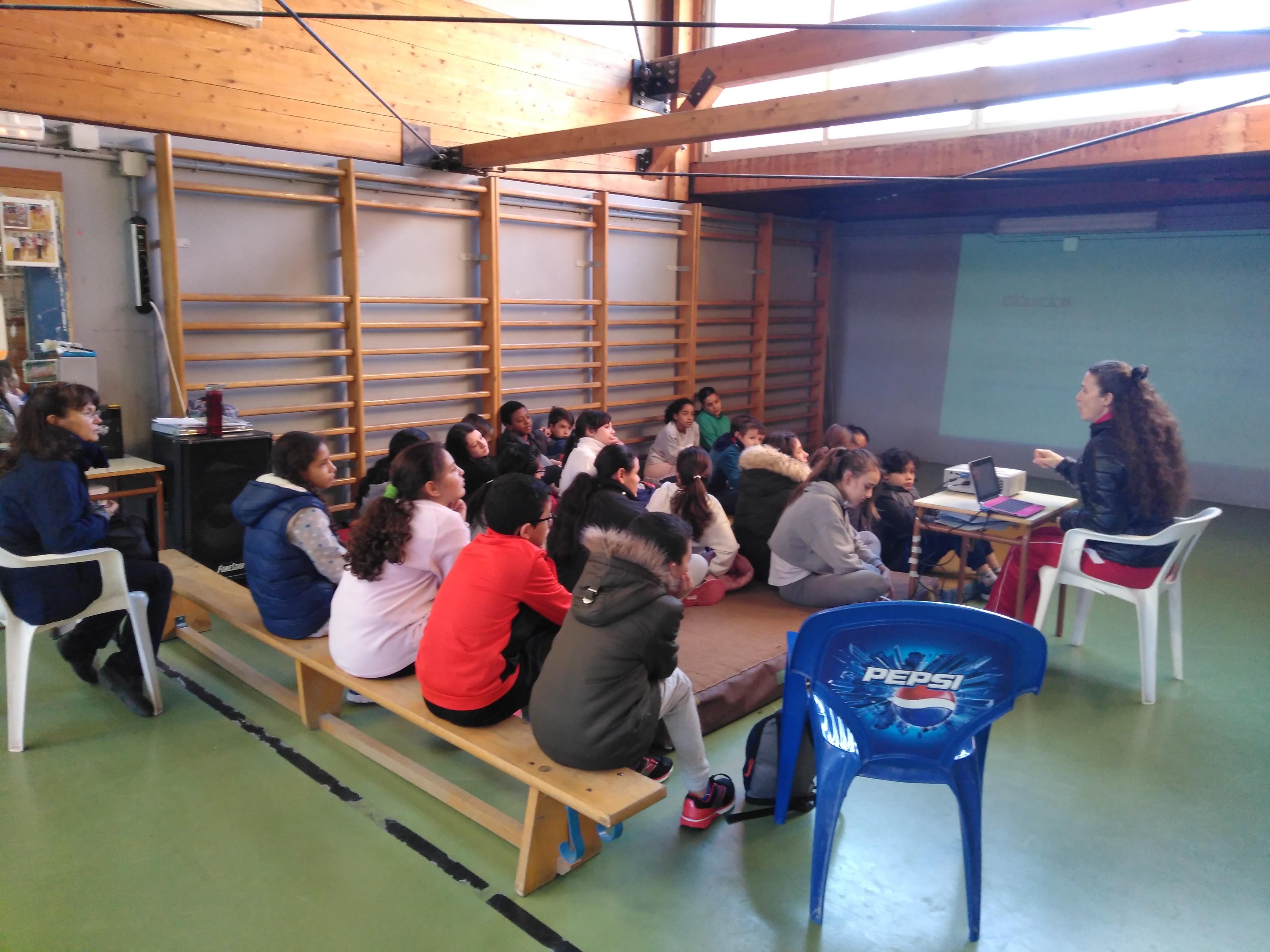Gimnasia de trampolín 3 15