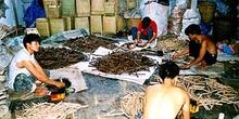 Taller de artesanía con proceso en cadena, Tailandia
