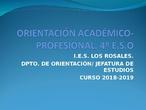 Orientacion Academica-Profesional del Curso 18-19 4º ESO