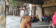 Excursión a la granja (Infantil) 4