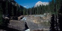 Saltos en un río de las Montañas Rocosas