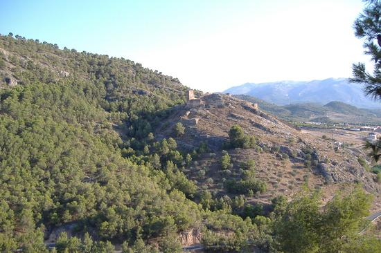 Castillo de Pliego (Murcia)