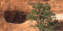 Cueva natural en una roca