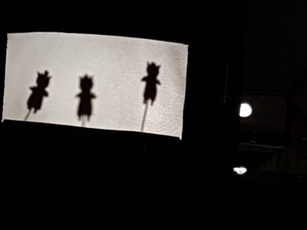 Los pulpos y las sombras chinas 7