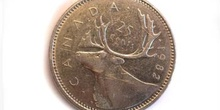 Dólar canadiense, Cruz