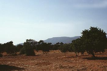 Extensión de terreno
