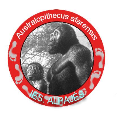 Australopithecus afarensis (pegatina)